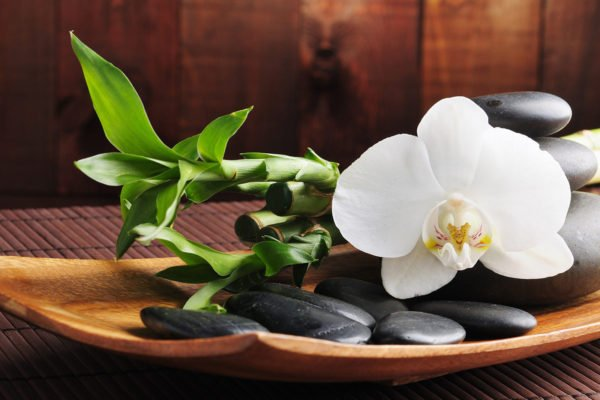 Massage Palm Beach Gardens