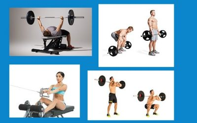 Functional Strength Benchmarks